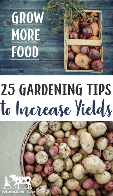 Want to grow enough vegetables to eat fresh and can? Maximize your garden space and increase yields with these 25 gardening tips to grow more in less space!
