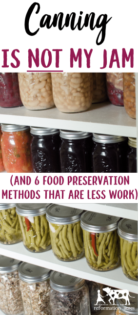 What can I say? I really don't like canning. I've always looked on canning the food we grow as a necessary evil. Canning is NOT my jam. Thankfully, there are6 Less-Work Food Preservation Methods I can resort to for most of the food we grow in the garden.