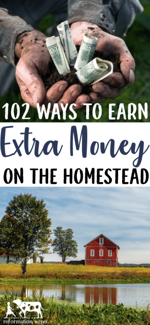 Want to put your skills to use and earn money homesteading? Here are over 100 side jobs you can do to make money off the land on a small farm.