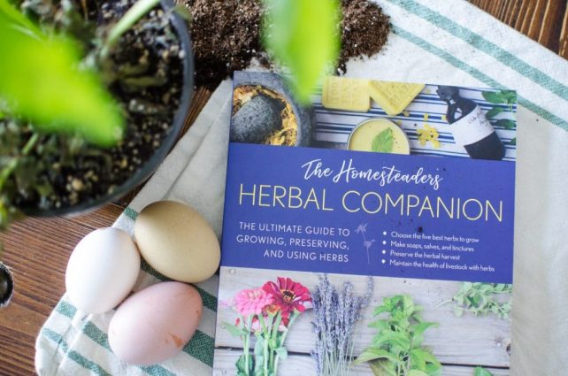 The Homesteader's Herbal Companion by Amy Fewell