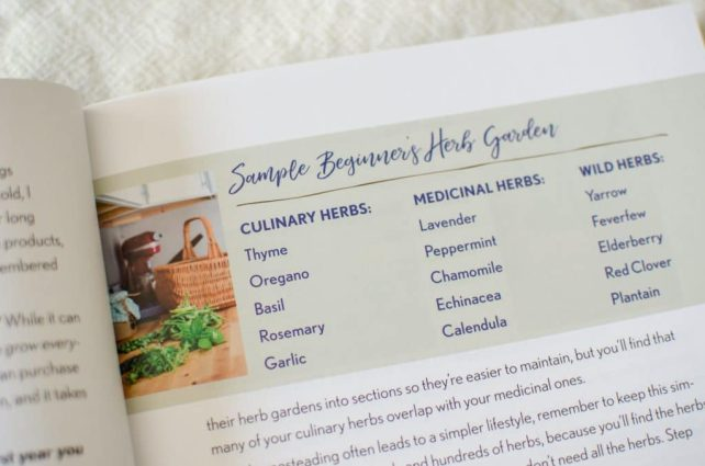 There are many herbs you could grow in your garden, but how to choose which ones? These tips will help beginner's choose what to plant in the herb garden.
