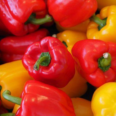 harvest a pepper