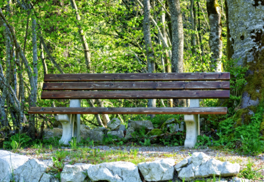 a wooden bench located near a shed