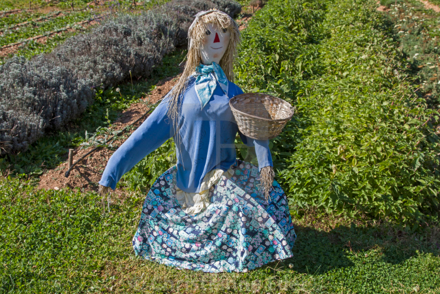 How To Make A Scarecrow Tips And Guide Reformation Acres