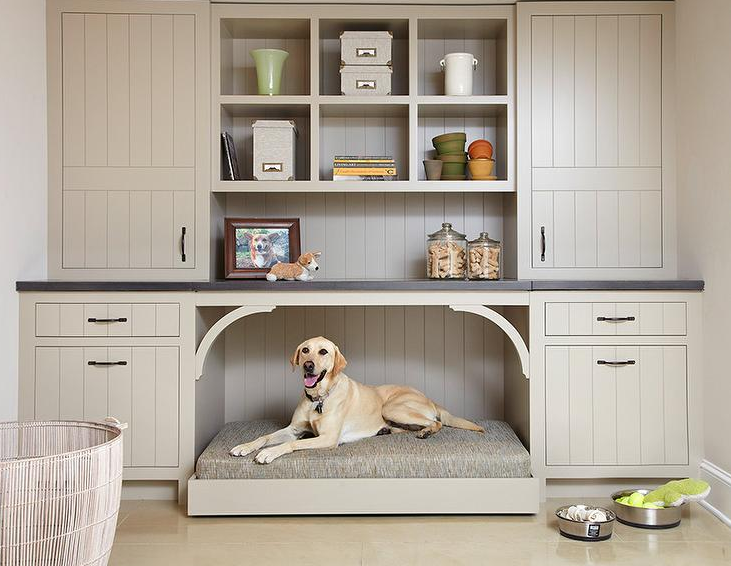Mudroom with a dog guard