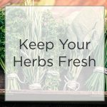 What You Need to Know to Have Your Fresh Herbs Last Longer