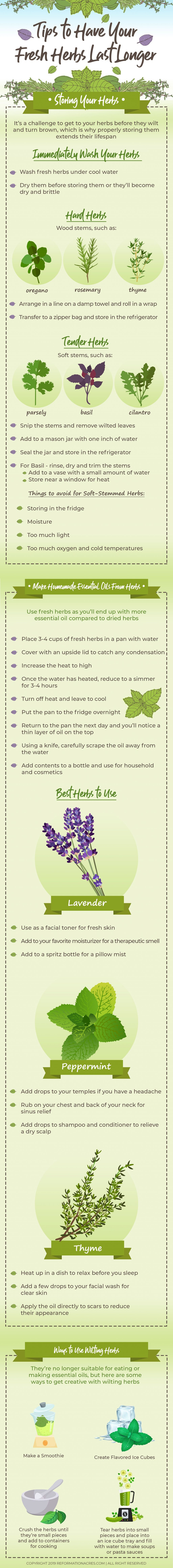 tips for fresh herbs infographic