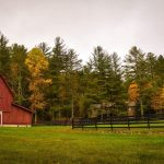 4 Things You Need To Know About Homesteading