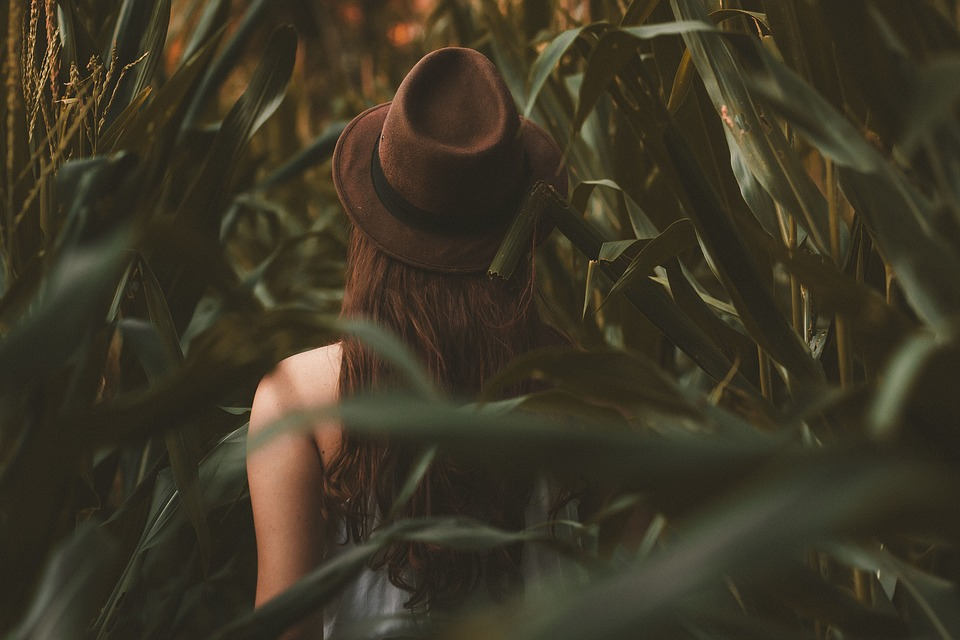 Woman wearing a cap wandering in corn field