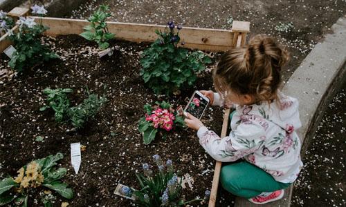 3 Coolest Raised Garden Bed Ideas