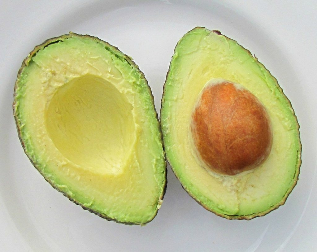 How To Grow Avocado Tree: Ultimate Guide