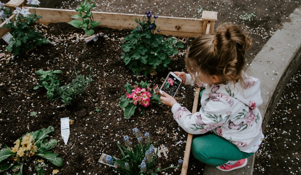 Little girl taking a picture of her garden