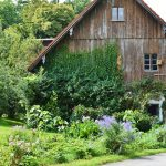 What Is Homesteading? Facts About This Increasingly Popular Way Of Life
