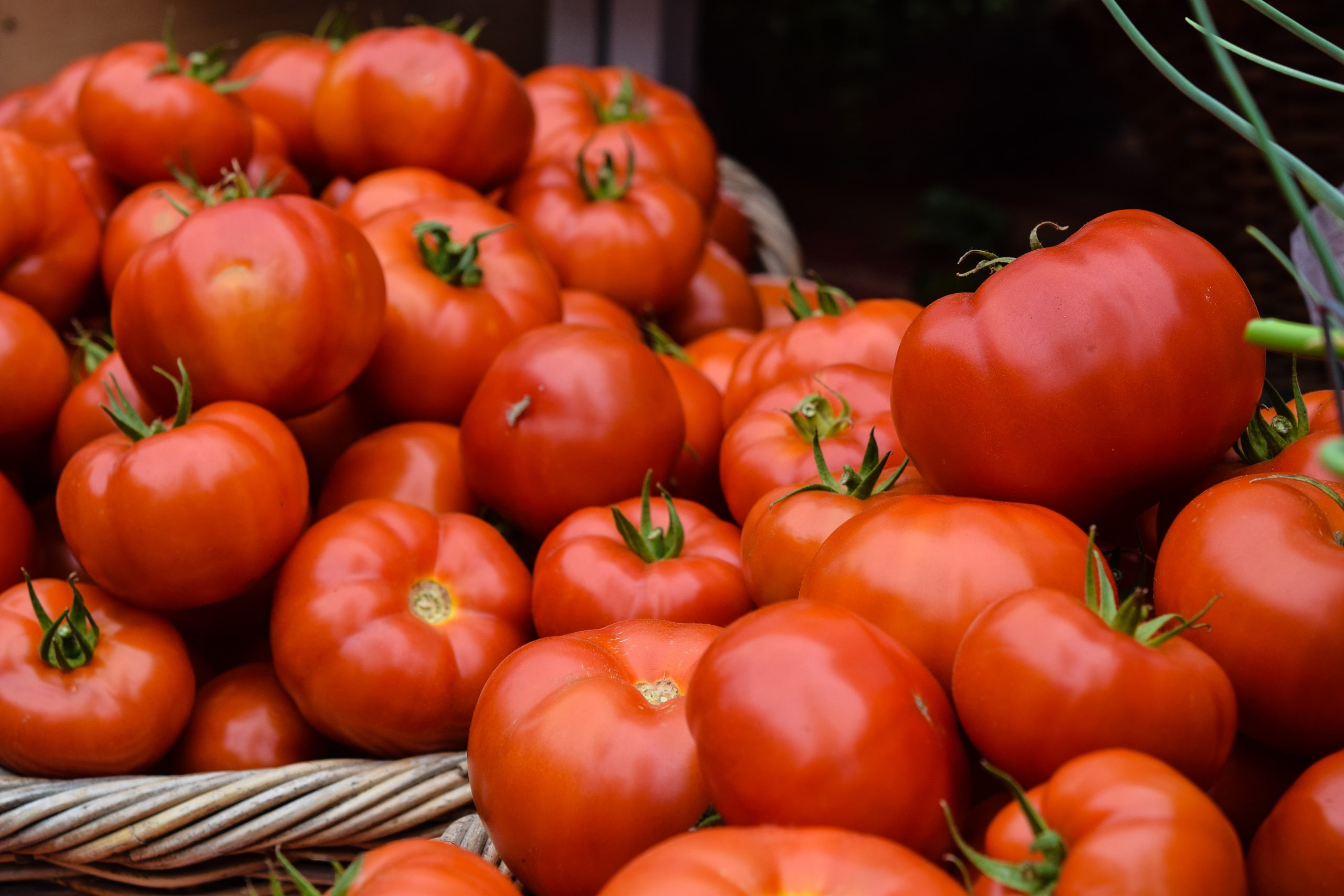 How to Plant Tomatoes That Will Yield the Fruit You Want